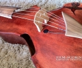 27_guitarviol-hummingbird
